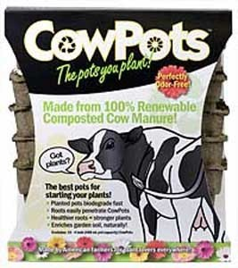 "Cow Pots 4"" (12 ct)"
