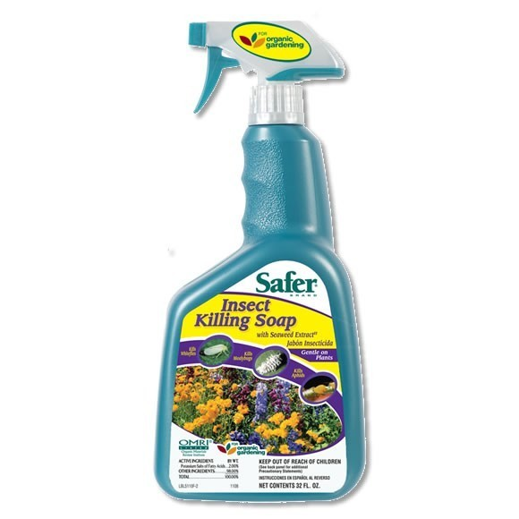 Safer Insecticidal Soap (1 qt. RTU)