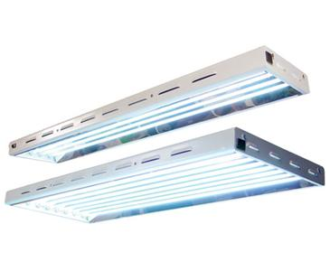Sun Blaze T5 HO 24 - 2 ft 4 Lamp