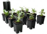 "Grow Flow 5 gal System w/Controller Unit & 3/4"" Tubing"